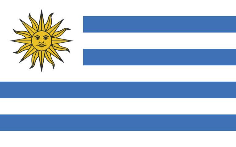 easyFly Uruguay Flag